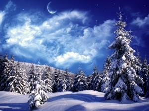Bonito cielo sobre un paisaje nevado