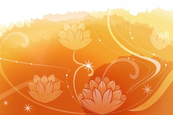 Bonitas flores en un fondo anaranjado
