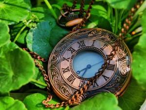Postal: Reloj de cobre sobre unas hojas verdes
