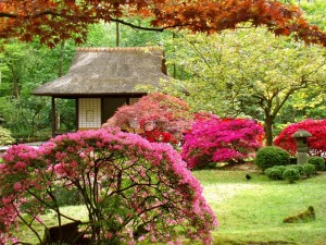 Postal: Jardín japonés en primavera