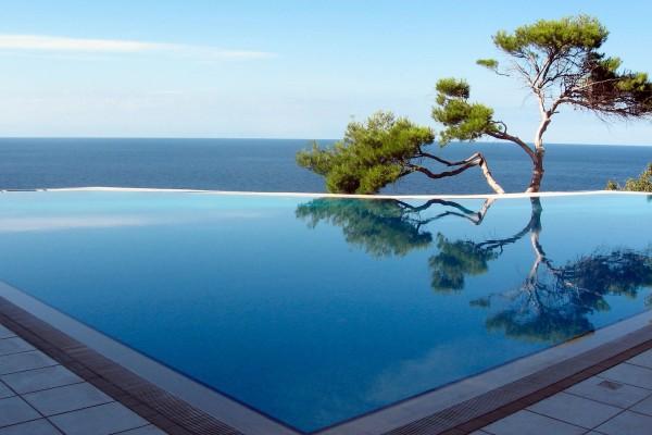 Árbol reflejado en una piscina