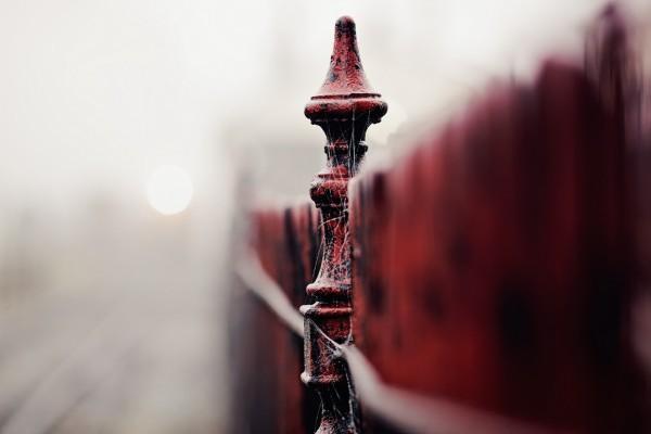 Telaraña sobre una valla roja