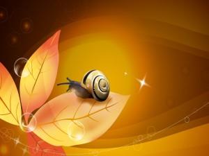 Postal: Un caracol brillante sobre una hoja anaranjada