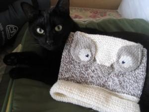 Postal: Gato negro junto a un bonito gorro