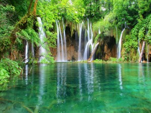Postal: Finas cascadas entre árboles