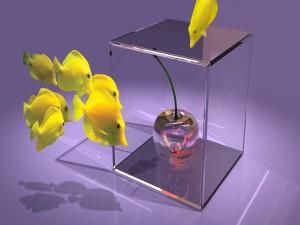 Postal: Curiosos peces amarillos 3D