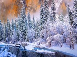 Postal: Parque Nacional de Yosemite tras una tormenta de nieve (California)