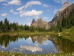 Postal: Bonito día primaveral en el lago