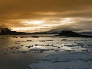 Postal: Océano ártico al atardecer