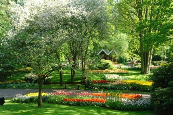 Jardines de Keukenhof (Holanda)
