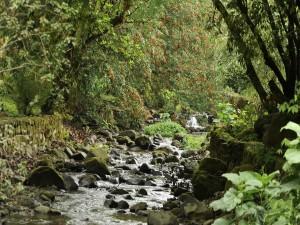 Bajo caudal de un río