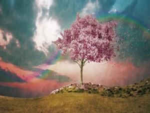 Colores del arcoíris sobre un árbol en flor