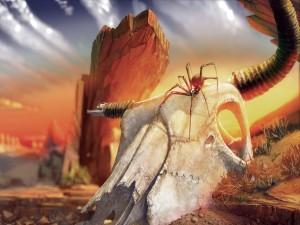 Araña sobre el esqueleto de un animal