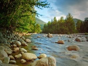 Grandes piedras en el río