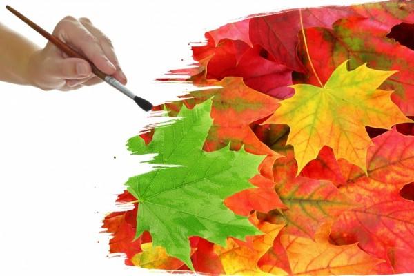 Pintando hojas de otoño