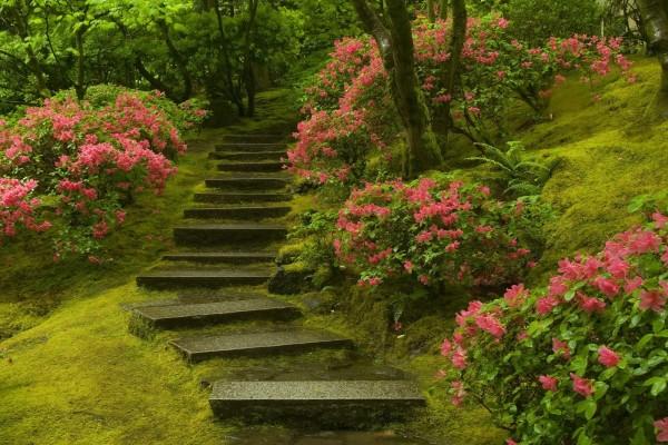 Escaleras en un jardín japonés