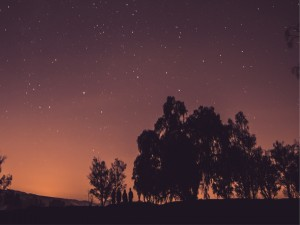 Postal: Caminando bajo un cielo estrellado