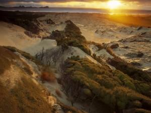 Postal: El sol iluminando la arena blanca del desierto