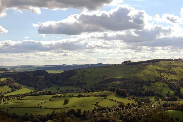Nubes sobre campos verdes con ganado