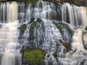 Maravillosa cascada