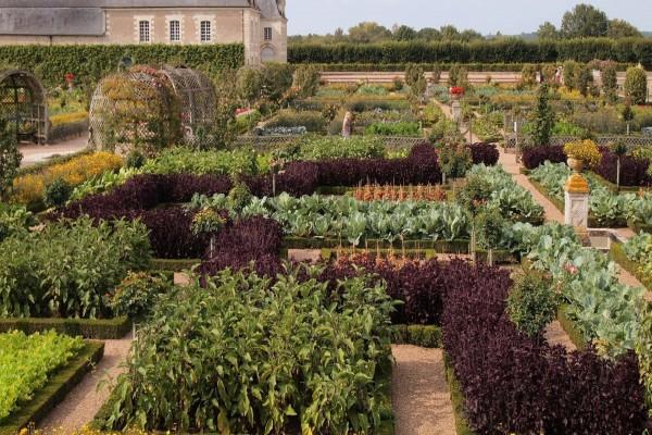 Espectacular jardín en el Chateau de Villandry