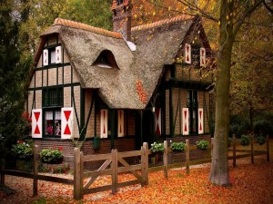 Acogedora casa en un bosque otoñal