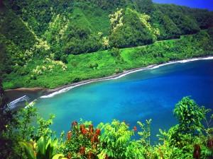 Postal: Un hermoso paisaje de mar y montañas verdes