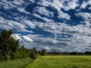 Cielo cubierto de nubes sobre un campo verde