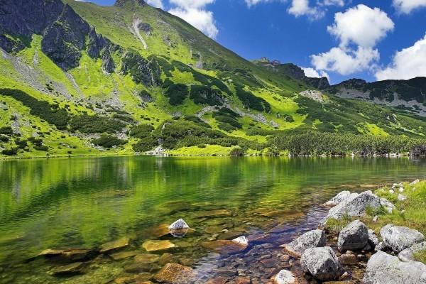 Montaña verde junto a un lago