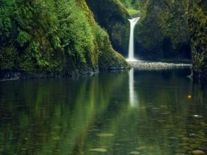 Postal: Cascada en un río pedregoso