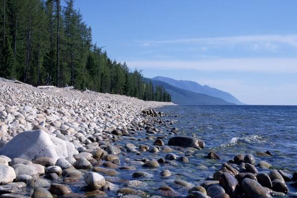 Piedras secas y mojadas junto al agua