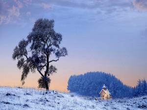 Postal: Paisaje nevado al comienzo del día