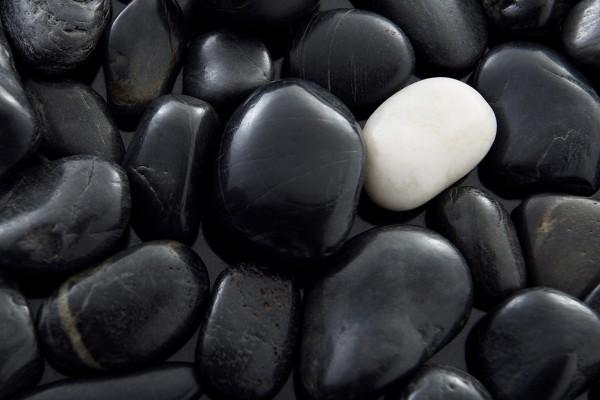 Una piedra blanca entre varias negras