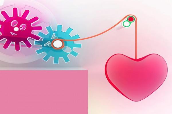 Mecanismo del amor