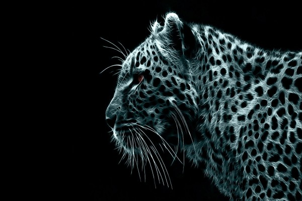 Leopardo digital