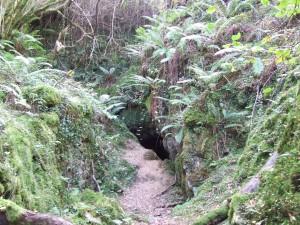 Cueva en el hayedo de la Biescona (Sierra del Sueve, Asturias)