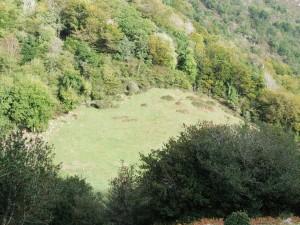 Postal: Sol iluminando una pradera verde (Sierra del Sueve, Asturias)