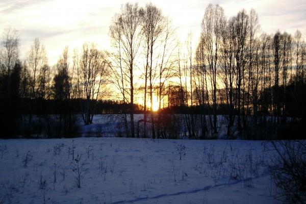 Paraje nevado al amanecer