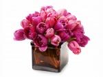 Tulipanes rosas en un florero cuadrado