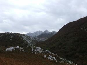 Montañas asturianas (Monte Camba)