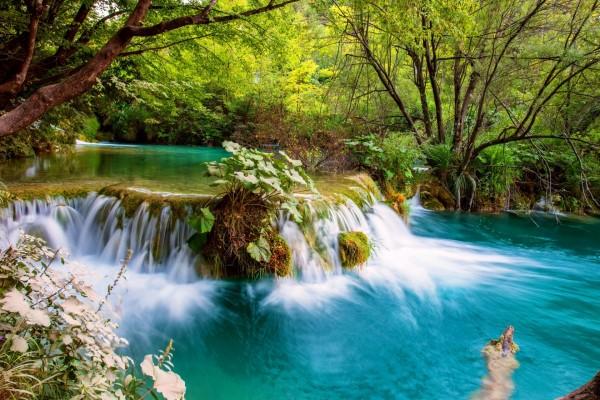 Dos colores en un mismo río