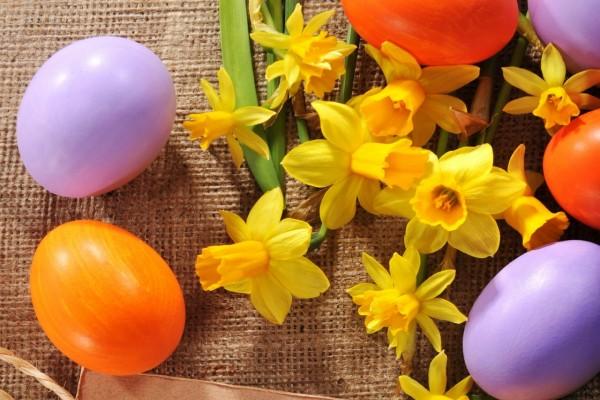 Huevos de Pascua y narcisos