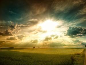 Postal: Campo recibiendo la luz de un brillante sol