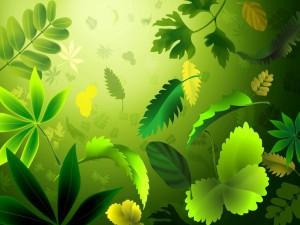 Postal: Hojas verdes