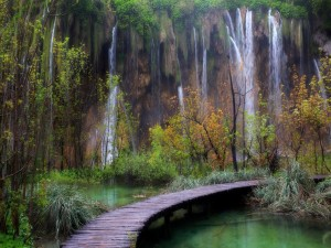 Postal: Pasarela de madera junto a unas cascadas
