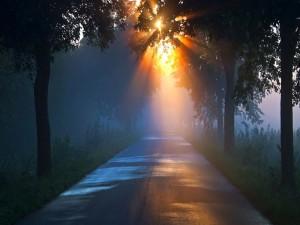 Postal: Amanecer sobre una carretera con niebla