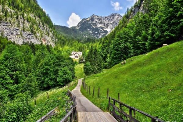 Camino estrecho hacia unas casa entre montañas