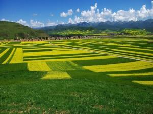 Postal: Espectacular vista de las montañas y los campos de cultivo