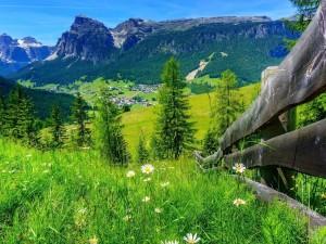 Paisaje de montaña en primavera