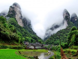 Niebla sobre Wulingyuan